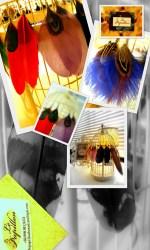 2011-09-11 Le Papillon23