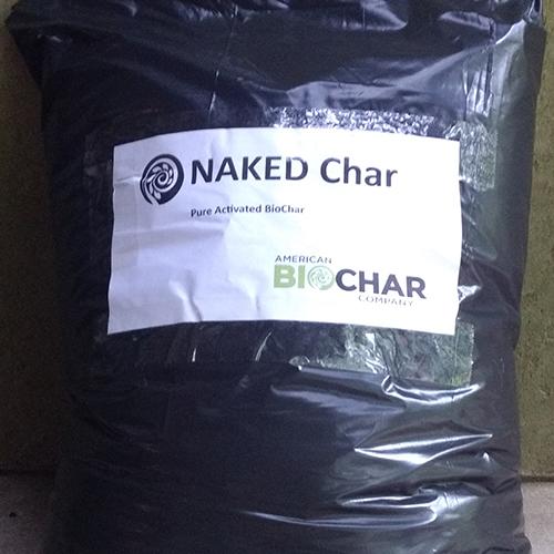 Naked Char bag square