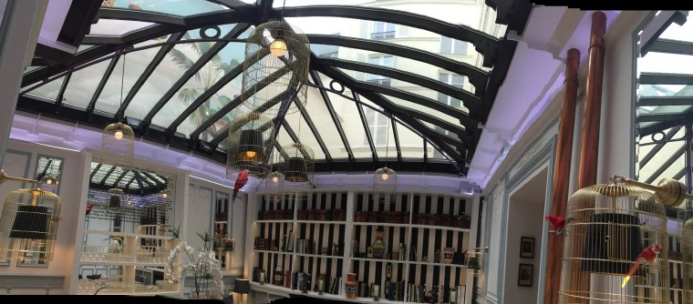 The honesty bar by day with the glass roof