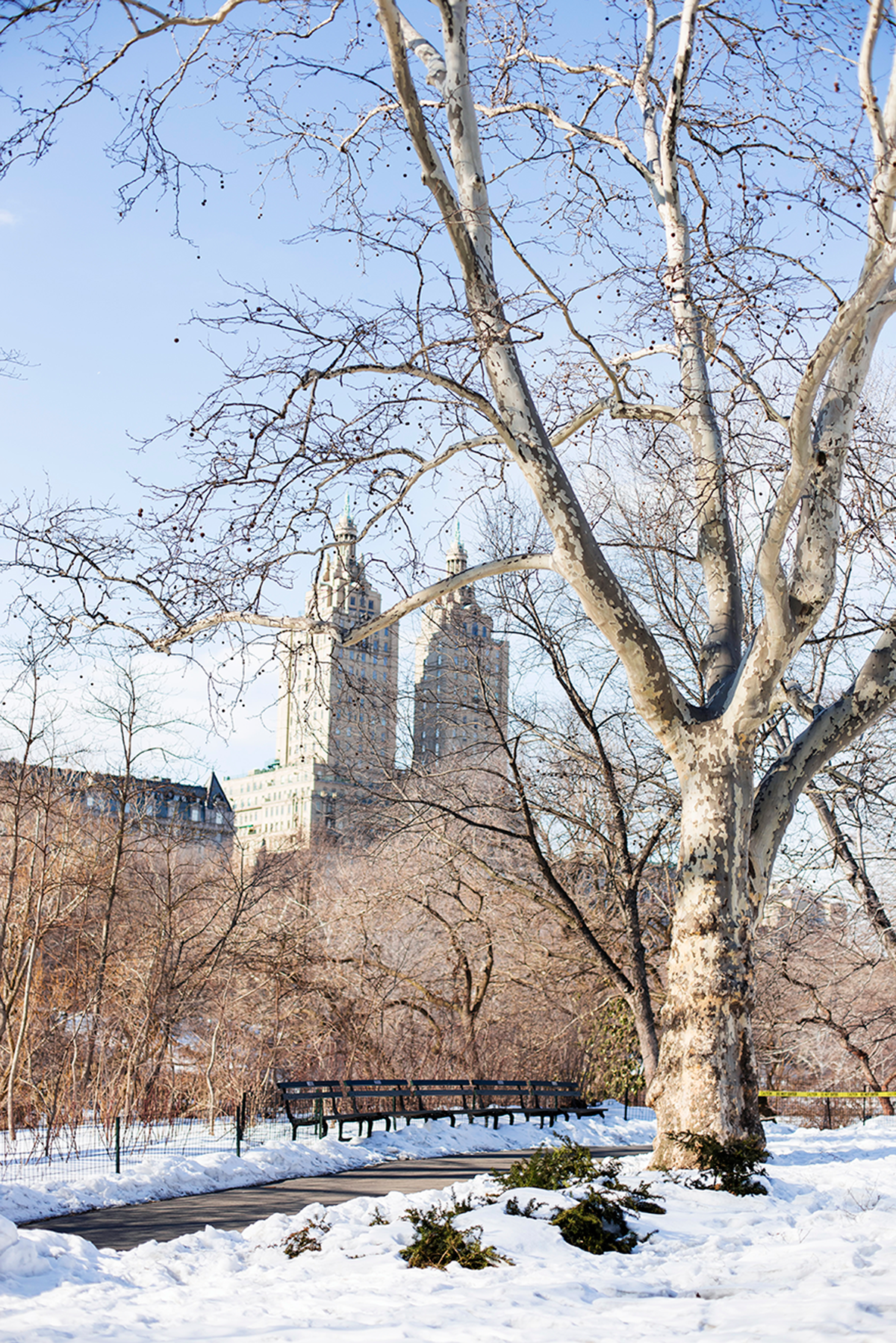 Beautiful photos of New York City February 2015 Central Park