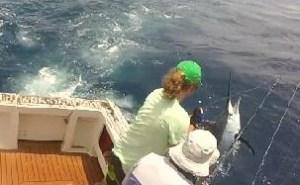 port stephens game fishing