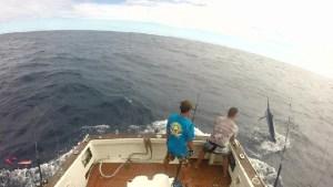 Boatside...
