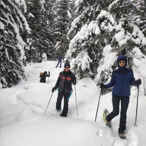Snowshoeing: Half-day