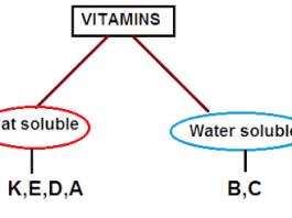 short notes on vitamins