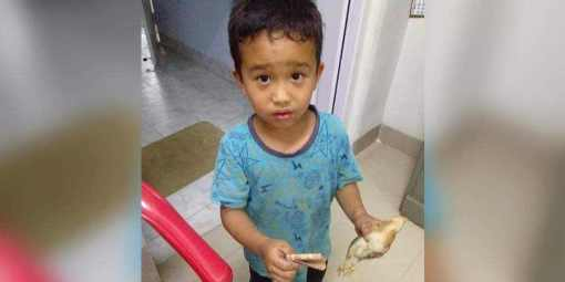 Mizoram boy who rushed chicken to hospital receives PETA India's 'Compassionate Kid' award