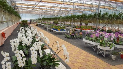 India's first Orchidarium opened in Meghalaya