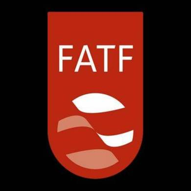 Pakistan placed under blacklist of FATF Asia-Pacific Group