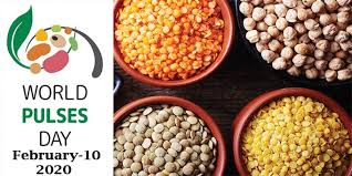 10th February: World Pulses Day
