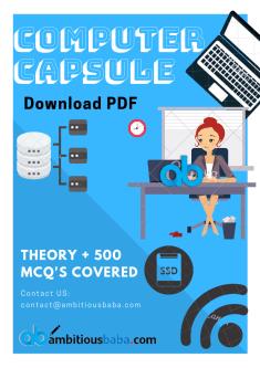 Computer Capsule PDF