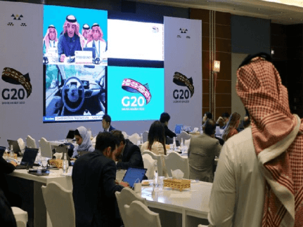 G20 Members at Virtual G20 Summit