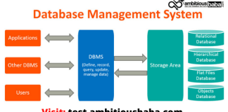 Database Management System (DBMS): Computer Awareness