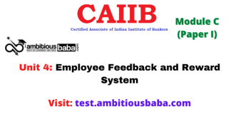 Employee Feedback and Reward System