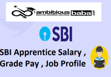 SBI Apprentice Salary , Grade Pay , Job Profile