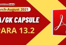 Para 13.2 GA Capsule PDF