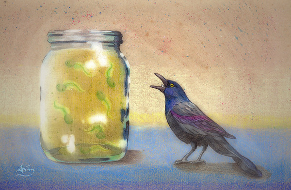 had a dream of a bird pecking at tadpoles in a jar.... so I drew what i saw... weird i know... done with Prisma color and some Photoshop to get the dreamy effect...