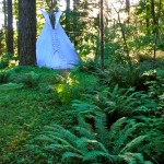 tipi-in-the-woods-at-the-tipi-village-retreat