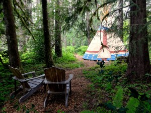 looking-at-Calapooia-tipi