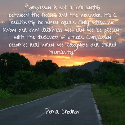 Pema Chodron Quote Ambuja Yoga Classy Pema Chodron Quotes