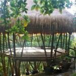 mountain-jungle-bali-yoga-retreat-bali