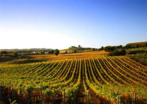 bordeaux-wine-yoga-retreat-france-luxury