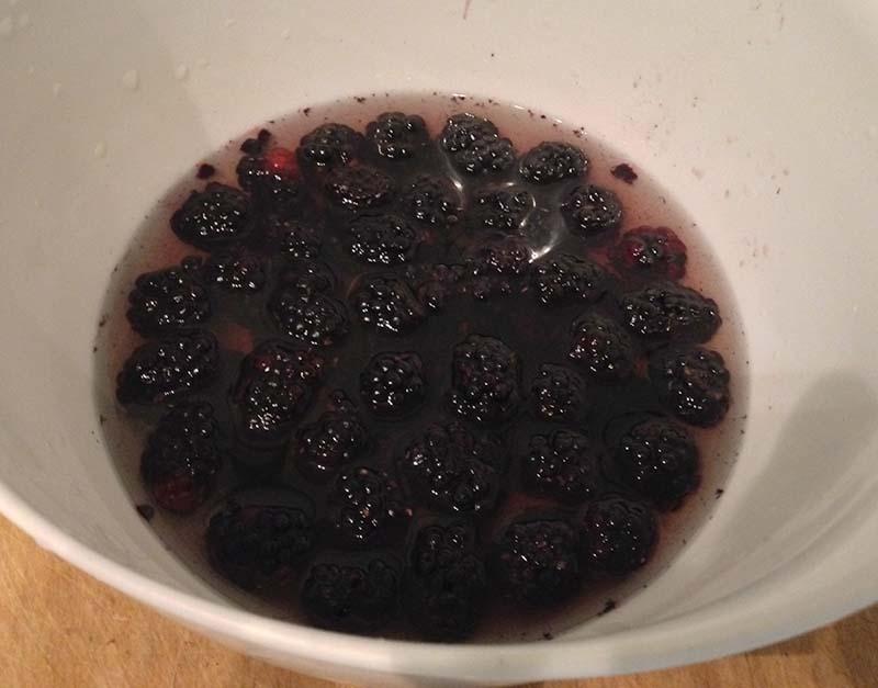 Organic Blackberry Sorbet   Ambuja Yoga