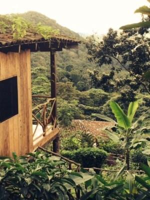 affordable-yoga-retreat-nicaragua-april-2018-jungle-view