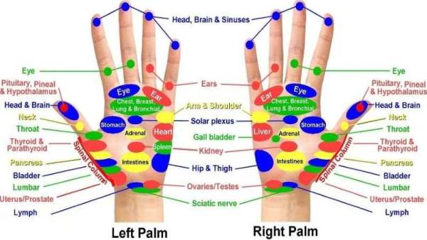 hand mudra acupressure points