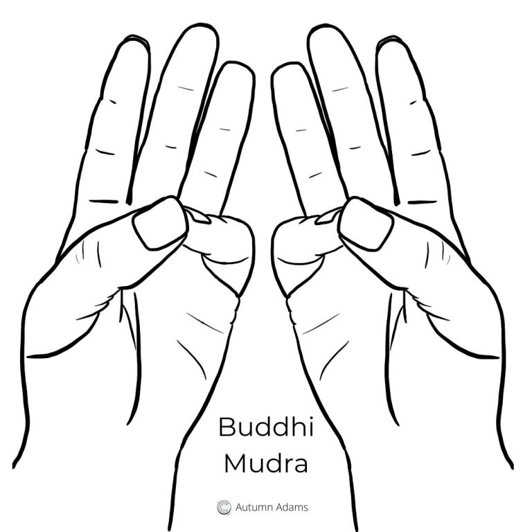 meditation hand position - buddhi mudra