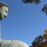 鎌倉の紅葉の名所・お寺のおすすめスポットとコースについて!長谷寺ライトアップ2017の期間と時間は?