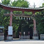 らき☆すたの聖地!鷲宮神社の初詣の混雑予想とアクセス方法やイベント情報を紹介します