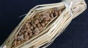 納豆効果が発揮されるのはいつ?健康になる為の食べ方のポイントをご紹介