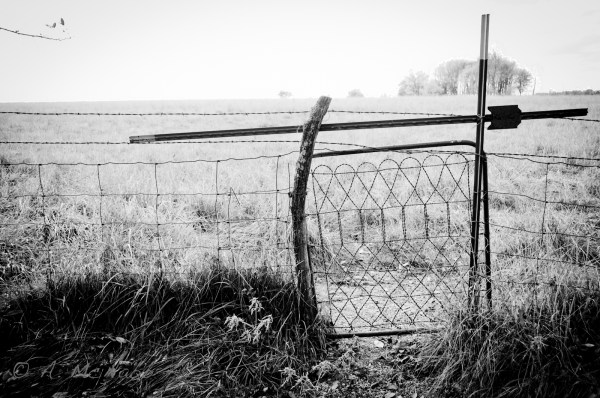 Gate to the field