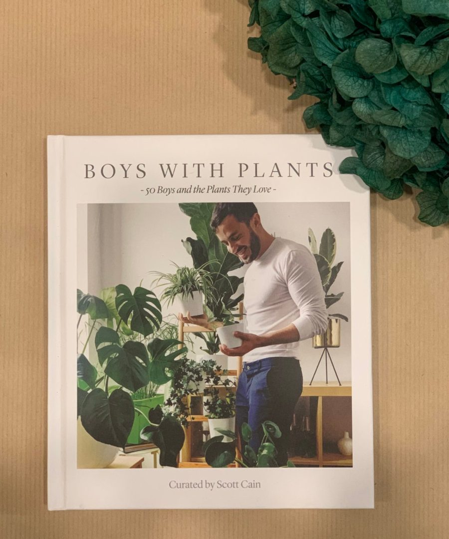 Boys with plants, livres, plantes, âme bordeaux, art
