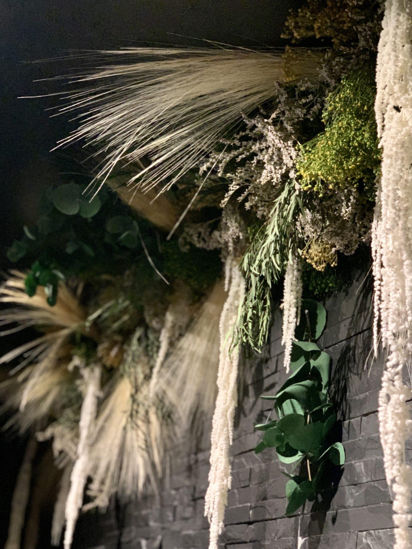 symbiose cascade vegetale ame bordeaux
