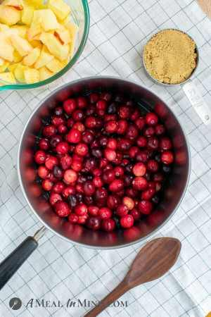 easy cranberry sauce with apples ingredients on table