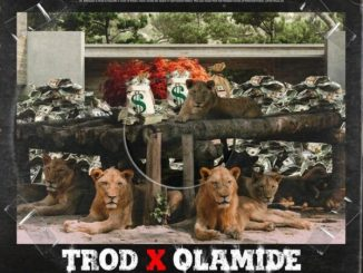 TROD ft Olamide – Shey You Fit Go Mp3 Download Free Audio