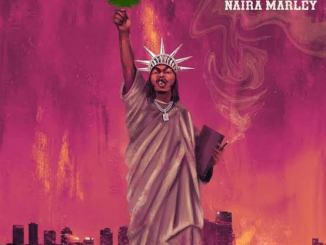 Naira Marley – First Time In America Mp3 Download Audio Free