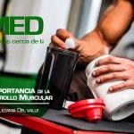Podcast 150 AMED – 5 Puntos De La Importancia De La Proteína Con El Dr. David Lezama