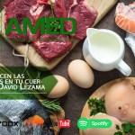 Podcast 354 AMED – ¿Qué Hacen Las Proteínas En Tu Cuerpo? Dr. David Lezama Del Valle