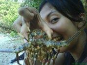 1 lobster = 10 ribu perak!