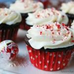 Dark Chocolate Peppermint Cupcake recipe