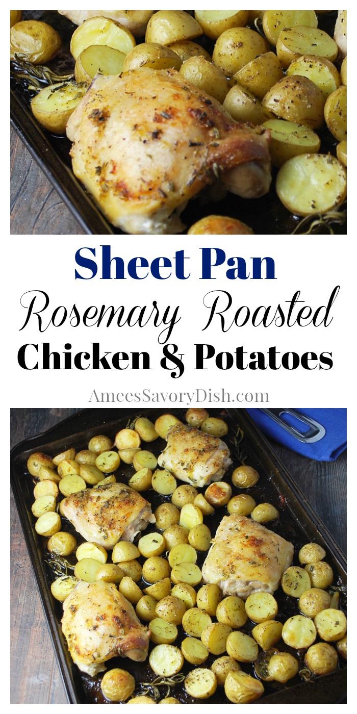 Sheet Pan Rosemary Roasted Chicken and Potatoes recipe