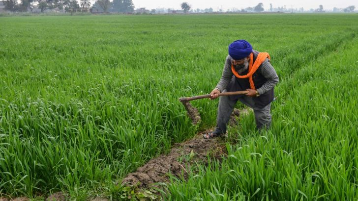 Agriculture declined by 1.33% in 2018—NBS