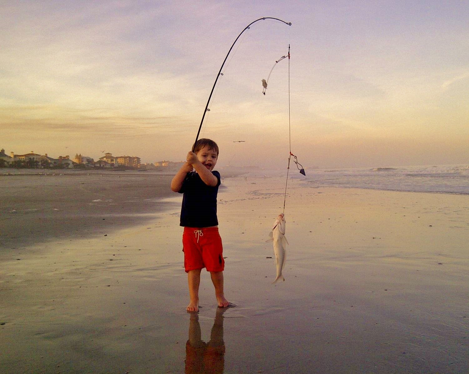 Amelia Island Beach Fishing by Terry Lacoss