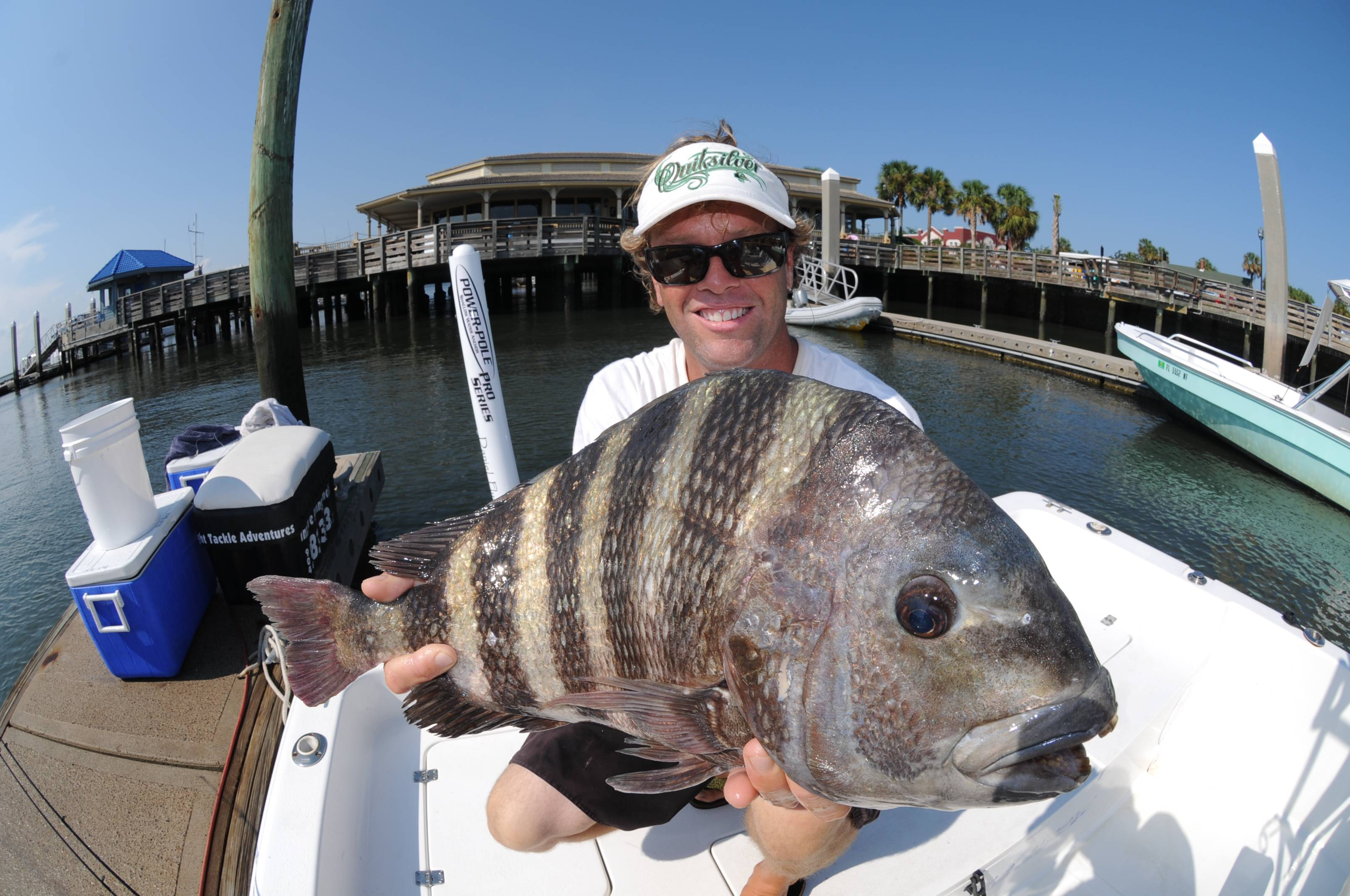 Big Bite Sheepshead