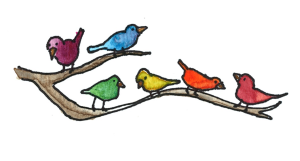 rainbow kindness camp birds ameliabehaviour