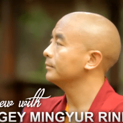 interview-with-mingyur-rinpoche-1