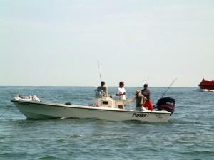 Amelia Island Fishing Reports 32