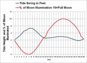 Tides Weather's impact fishing