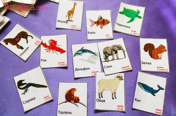 картинки животных для детей скачать бесплатноAmelica